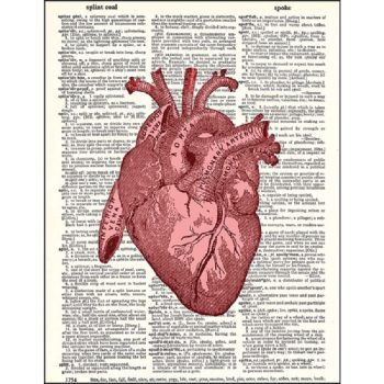 Human heart dictionary print