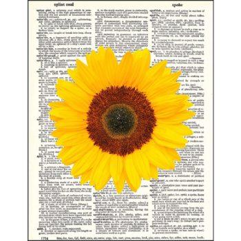 Sunflower dictionary print